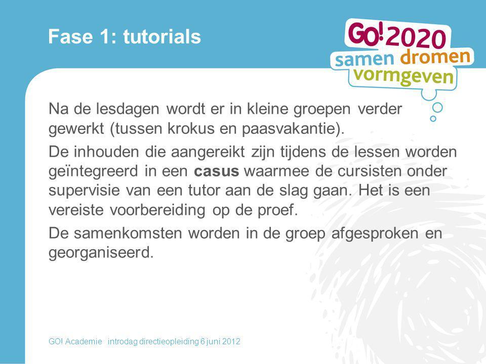 Fase 1: tutorials Na de lesdagen wordt er in kleine groepen verder gewerkt (tussen krokus en paasvakantie). De inhouden die aangereikt zijn tijdens de