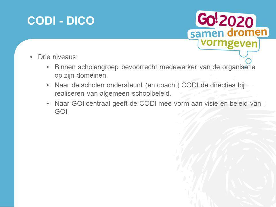 CODI - DICO Drie niveaus: Binnen scholengroep bevoorrecht medewerker van de organisatie op zijn domeinen. Naar de scholen ondersteunt (en coacht) CODI