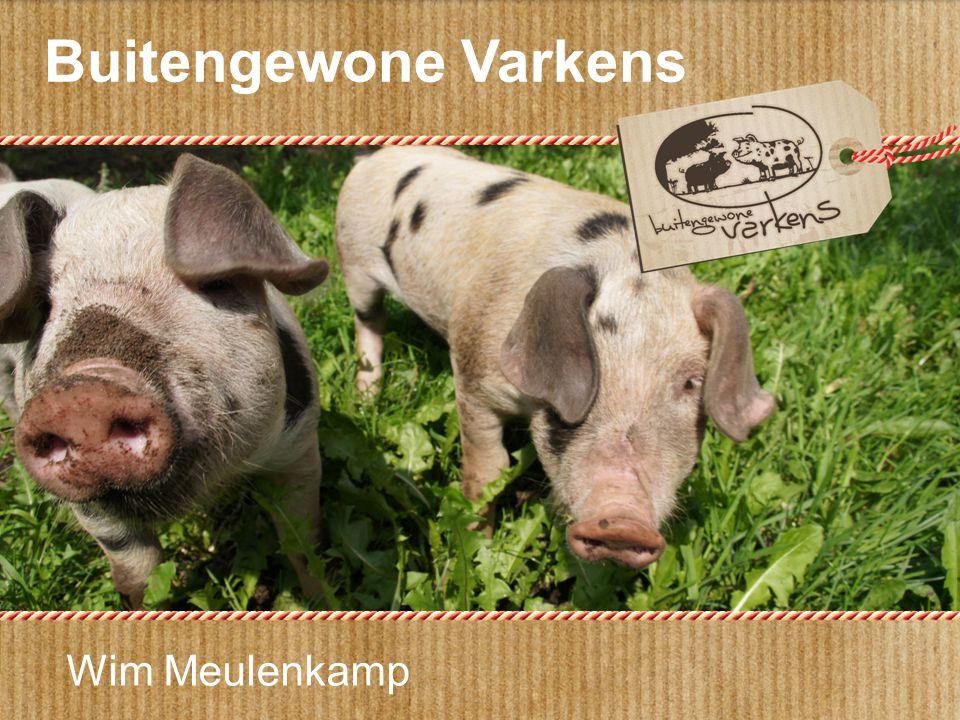 Buitengewone Varkens Wim Meulenkamp