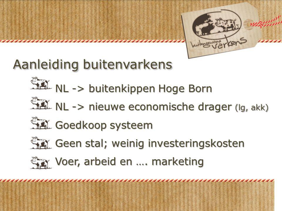 Aanleiding buitenvarkens NL -> buitenkippen Hoge Born NL -> nieuwe economische drager (lg, akk) Goedkoop systeem Geen stal; weinig investeringskosten Voer, arbeid en ….