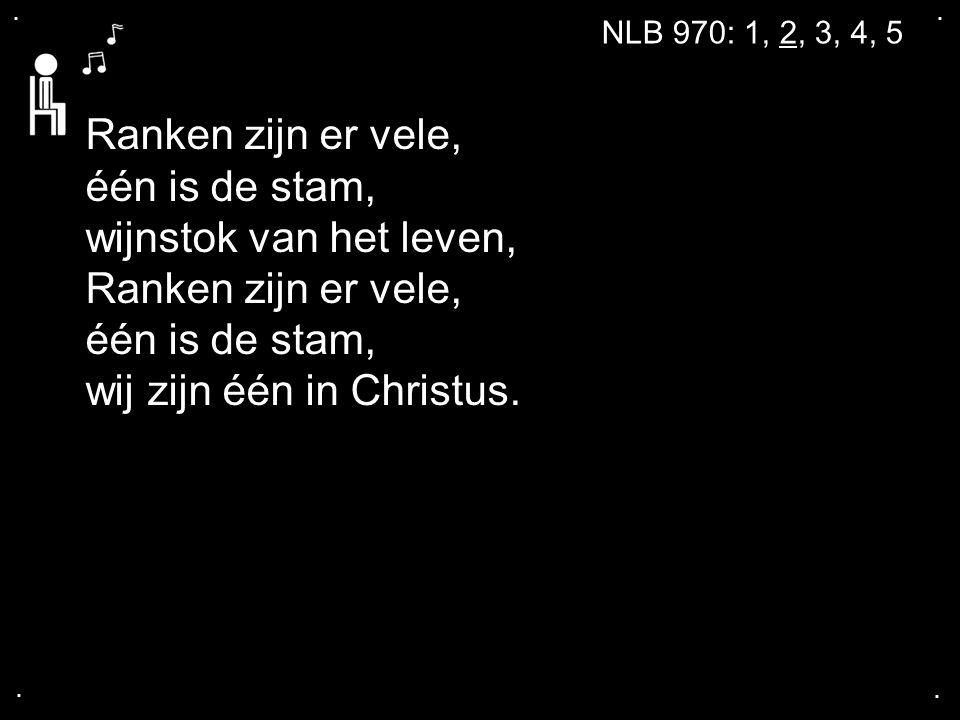 .... NLB 970: 1, 2, 3, 4, 5 Ranken zijn er vele, één is de stam, wijnstok van het leven, Ranken zijn er vele, één is de stam, wij zijn één in Christus