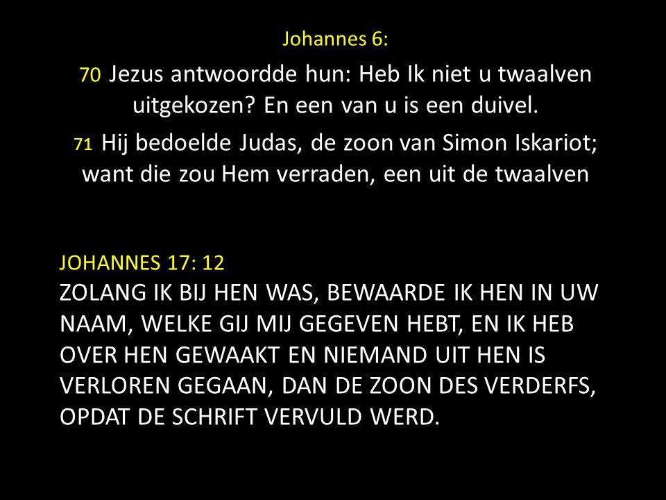 JOHANNES 17: 12 ZOLANG IK BIJ HEN WAS, BEWAARDE IK HEN IN UW NAAM, WELKE GIJ MIJ GEGEVEN HEBT, EN IK HEB OVER HEN GEWAAKT EN NIEMAND UIT HEN IS VERLOR