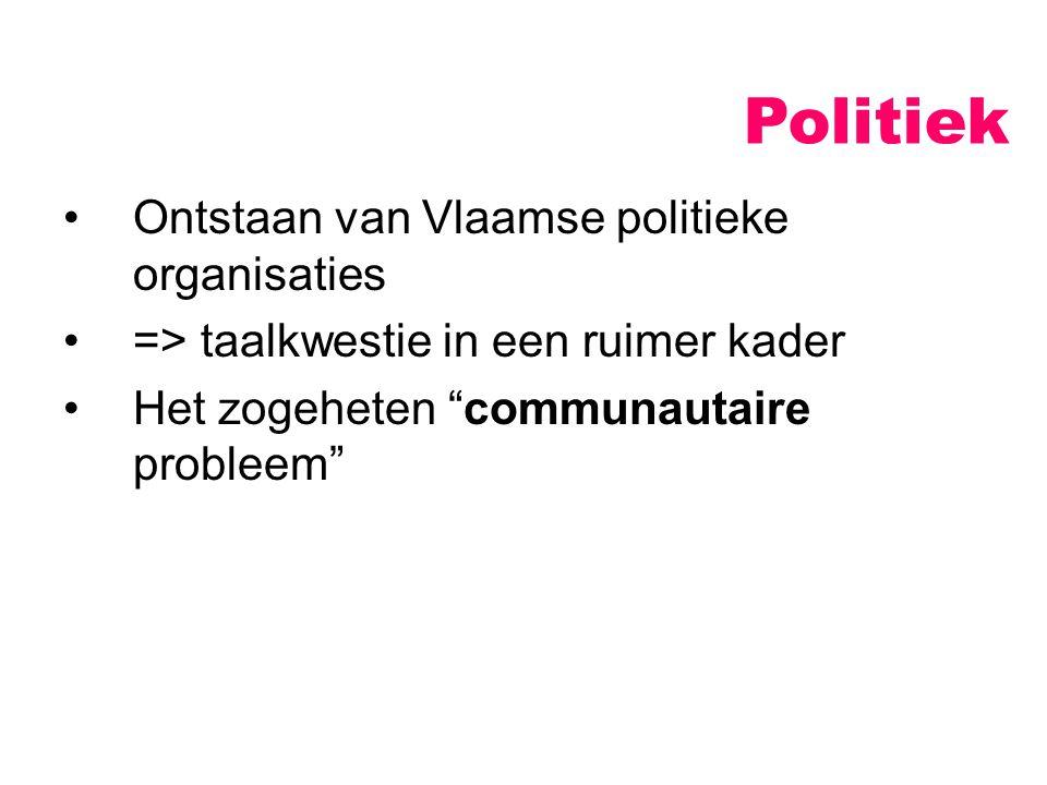 """Politiek Ontstaan van Vlaamse politieke organisaties => taalkwestie in een ruimer kader Het zogeheten """"communautaire probleem"""""""