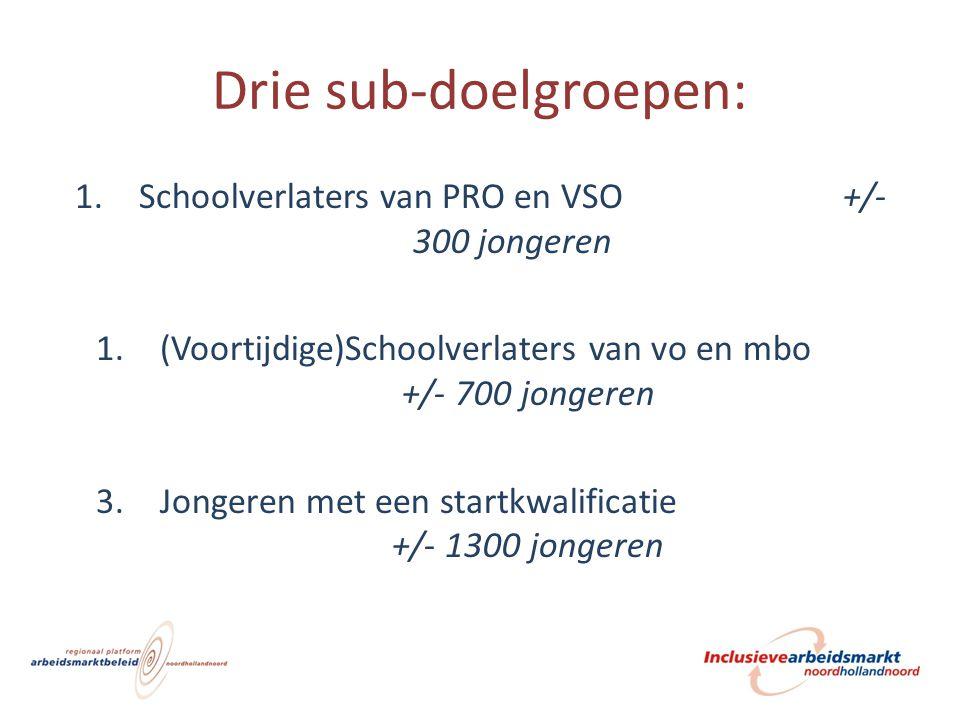 Drie sub-doelgroepen: 1.Schoolverlaters van PRO en VSO +/- 300 jongeren 1.(Voortijdige)Schoolverlaters van vo en mbo +/- 700 jongeren 3.Jongeren met e