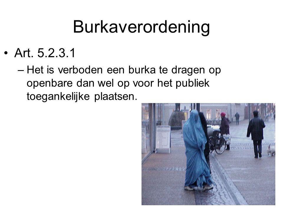 Burkaverordening Art.