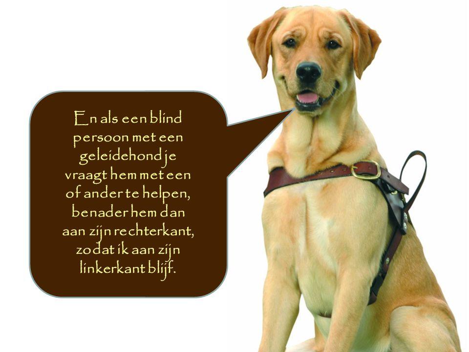 En als een blind persoon met een geleidehond je vraagt hem met een of ander te helpen, benader hem dan aan zijn rechterkant, zodat ik aan zijn linkerk