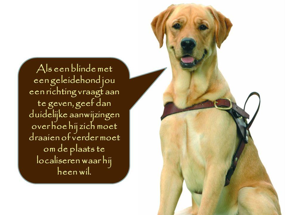 Als een blinde met een geleidehond jou een richting vraagt aan te geven, geef dan duidelijke aanwijzingen over hoe hij zich moet draaien of verder moe
