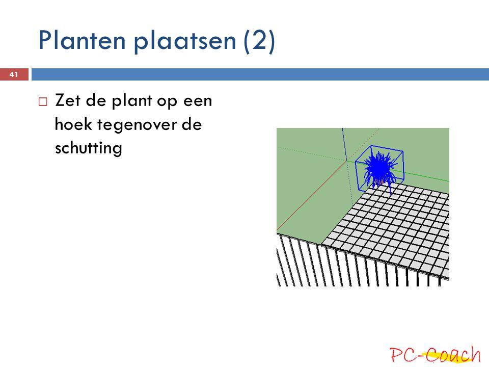 Planten plaatsen (2)  Zet de plant op een hoek tegenover de schutting 41