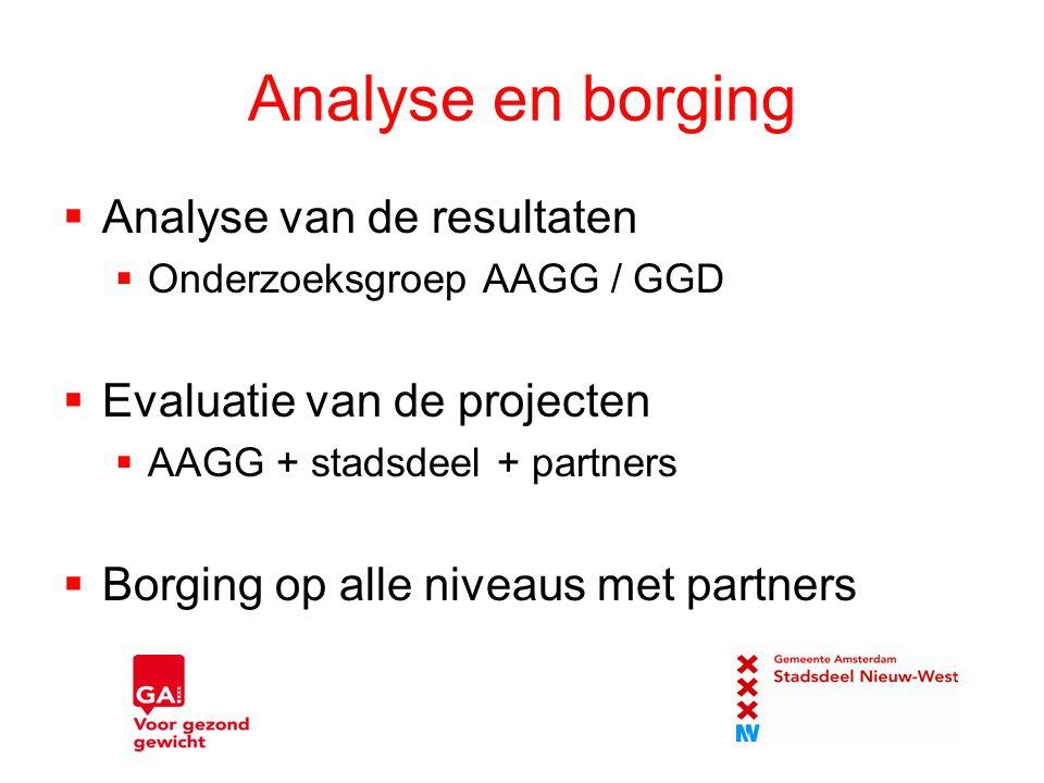 Analyse en borging  Analyse van de resultaten  Onderzoeksgroep AAGG / GGD  Evaluatie van de projecten  AAGG + stadsdeel + partners  Borging op al