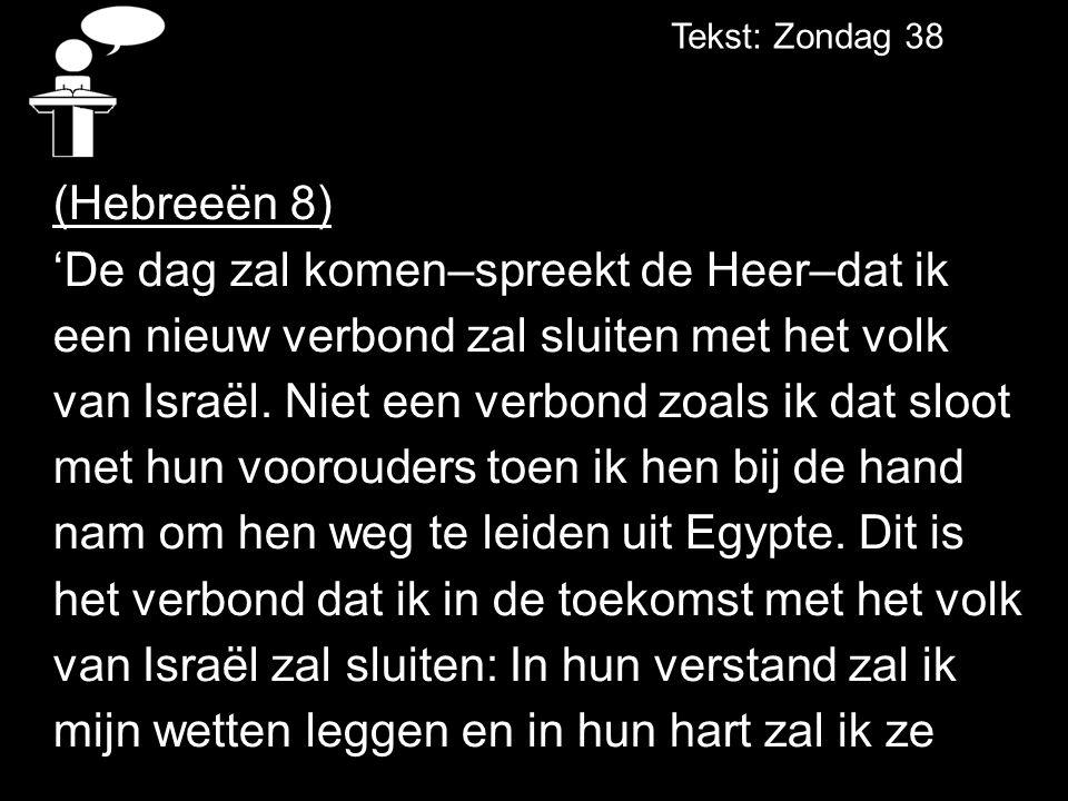Tekst: Zondag 38 (Hebreeën 8) 'De dag zal komen–spreekt de Heer–dat ik een nieuw verbond zal sluiten met het volk van Israël.