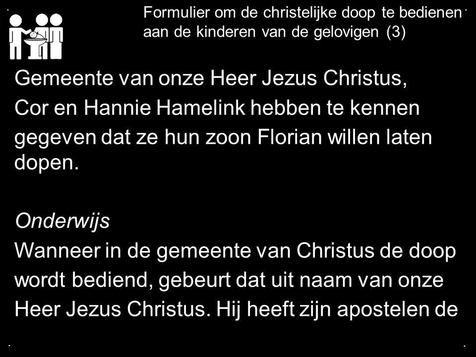 .... Formulier om de christelijke doop te bedienen aan de kinderen van de gelovigen (3) Gemeente van onze Heer Jezus Christus, Cor en Hannie Hamelink