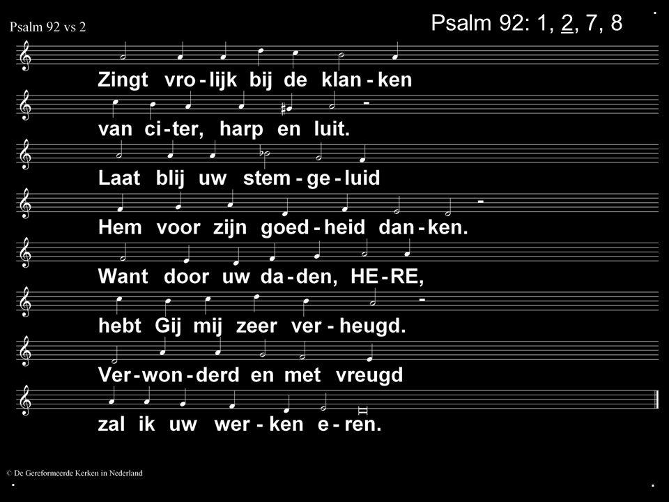 Tekst: Zondag 38 De rechtvaardigen groeien op als een palm, als een ceder van de Libanon rijzen zij omhoog.