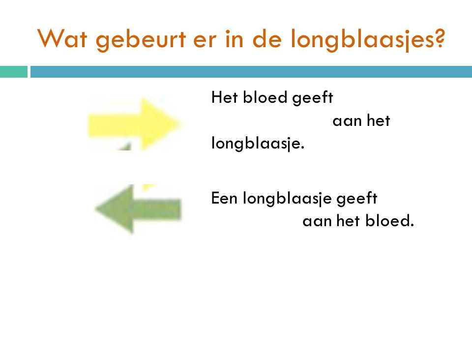 Wat gebeurt er in de longblaasjes? Het bloed geeft koolstofdioxide aan het longblaasje. Een longblaasje geeft zuurstofgas aan het bloed.