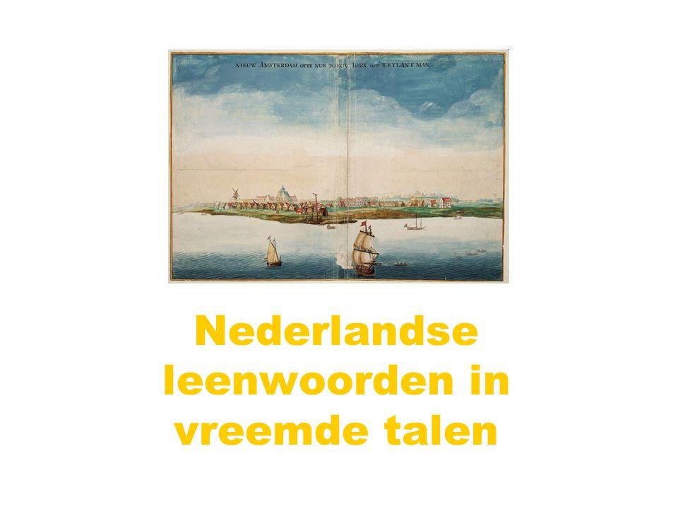 Nederlandse leenwoorden in vreemde talen