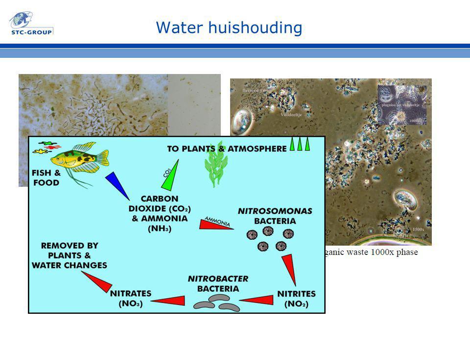 Water huishouding