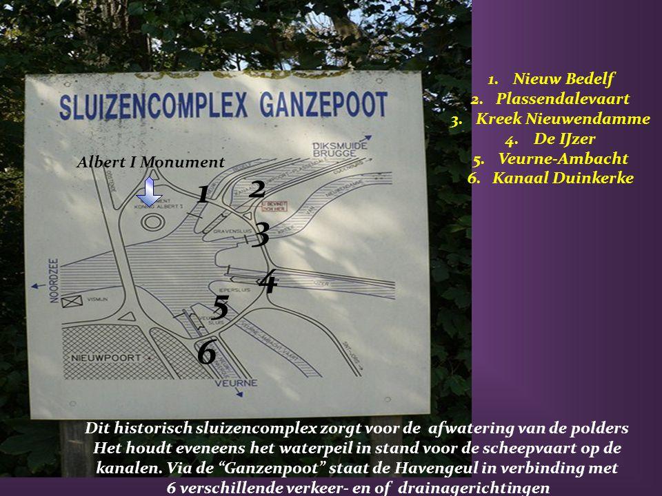 """Van boven op het momument zicht op""""De Ganzenpoot"""" en Nieuwpoort-Stad"""
