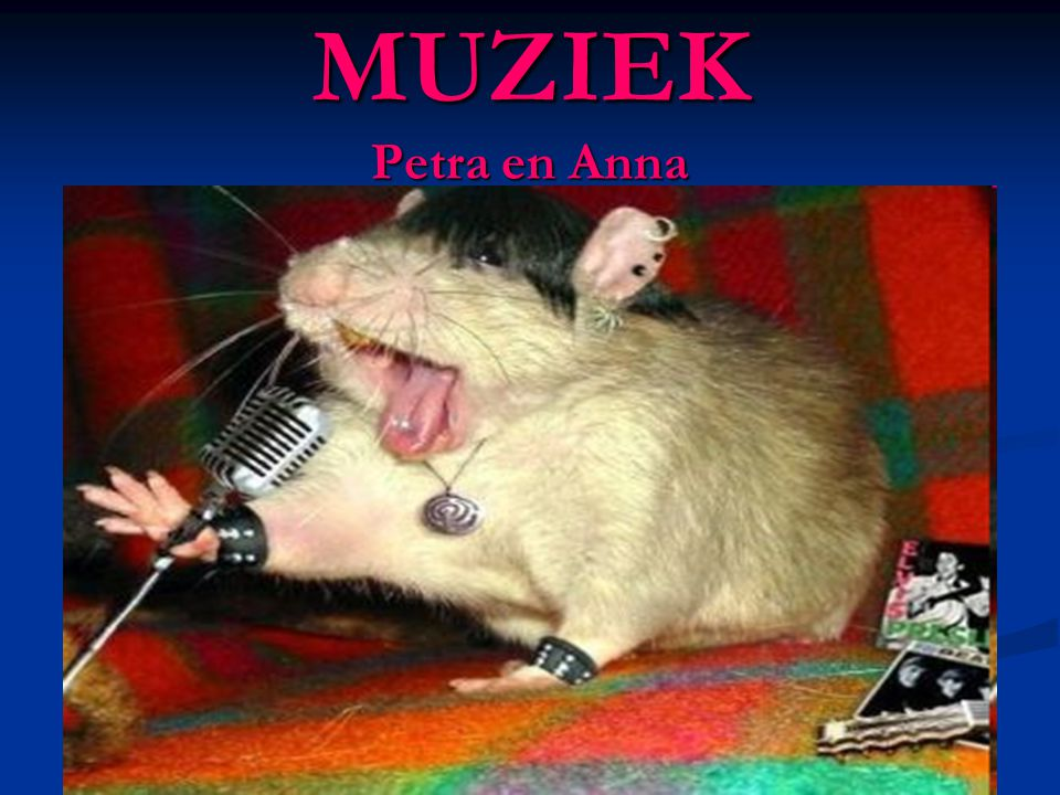 MUZIEK Petra en Anna