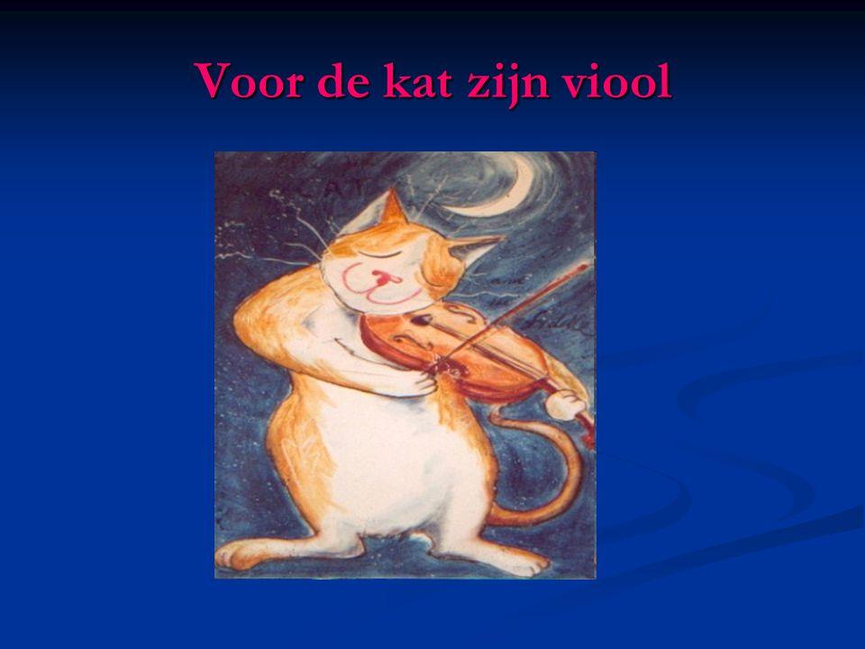 Voor de kat zijn viool