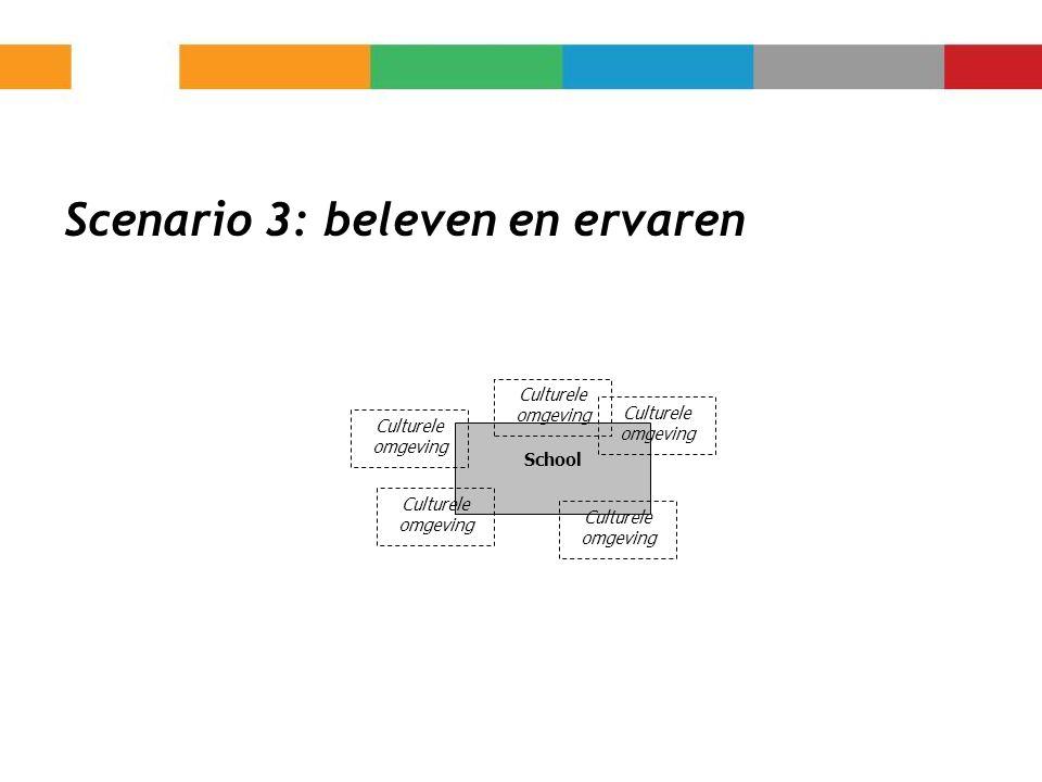 Scenario 3: beleven en ervaren School Culturele omgeving