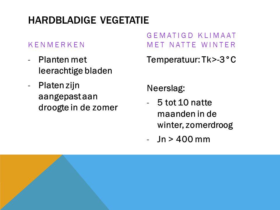 HARDBLADIGE VEGETATIE KENMERKEN -Planten met leerachtige bladen -Platen zijn aangepast aan droogte in de zomer GEMATIGD KLIMAAT MET NATTE WINTER Tempe