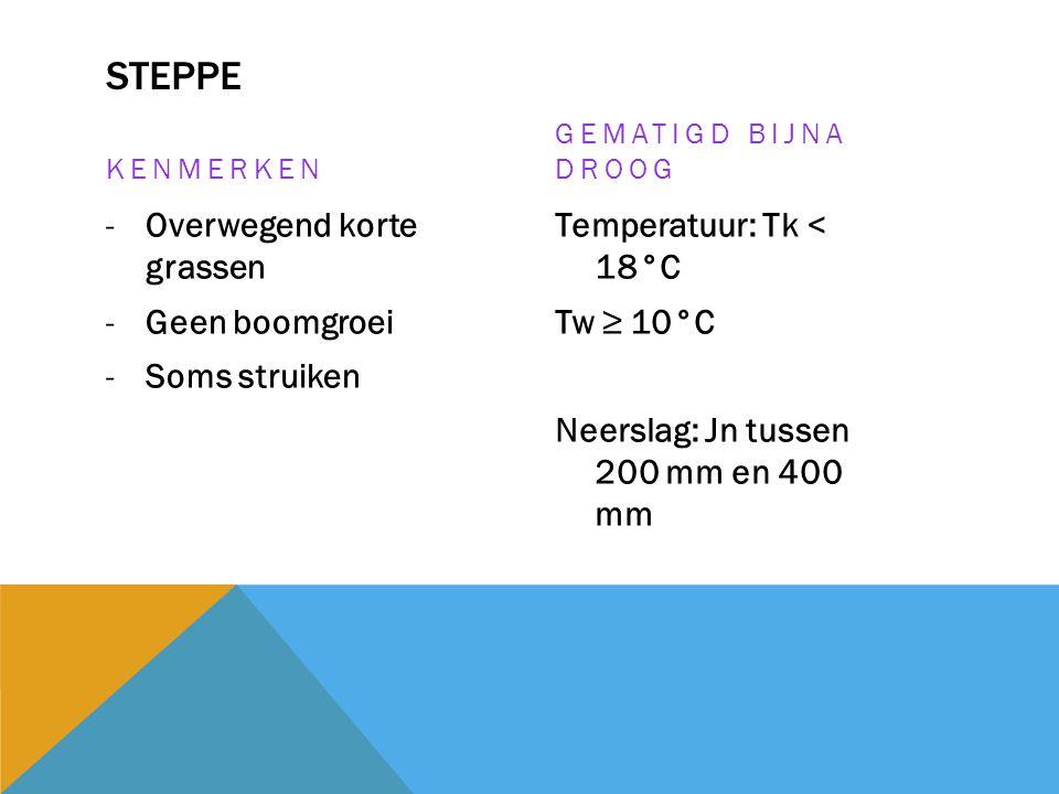 STEPPE KENMERKEN -Overwegend korte grassen -Geen boomgroei -Soms struiken GEMATIGD BIJNA DROOG Temperatuur: Tk < 18°C Tw ≥ 10°C Neerslag: Jn tussen 20