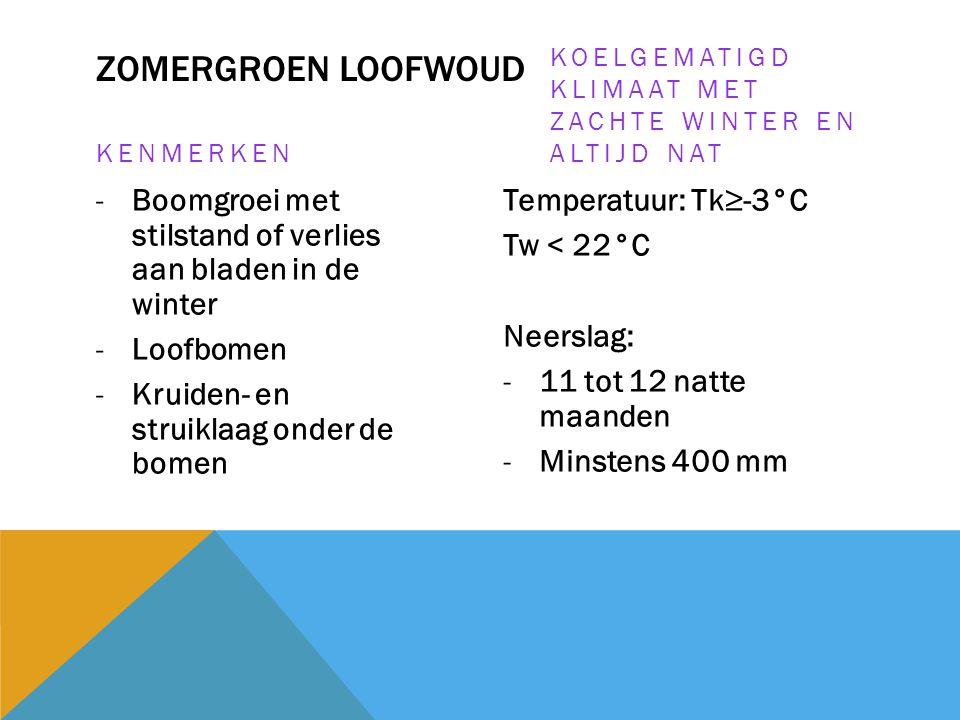 ZOMERGROEN LOOFWOUD KENMERKEN -Boomgroei met stilstand of verlies aan bladen in de winter -Loofbomen -Kruiden- en struiklaag onder de bomen KOELGEMATI