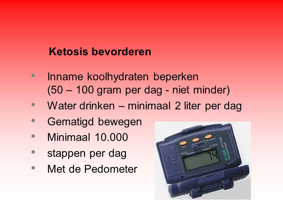 Inname koolhydraten beperken (50 – 100 gram per dag - niet minder) Water drinken – minimaal 2 liter per dag Gematigd bewegen Minimaal 10.000 stappen per dag Met de Pedometer Ketosis bevorderen