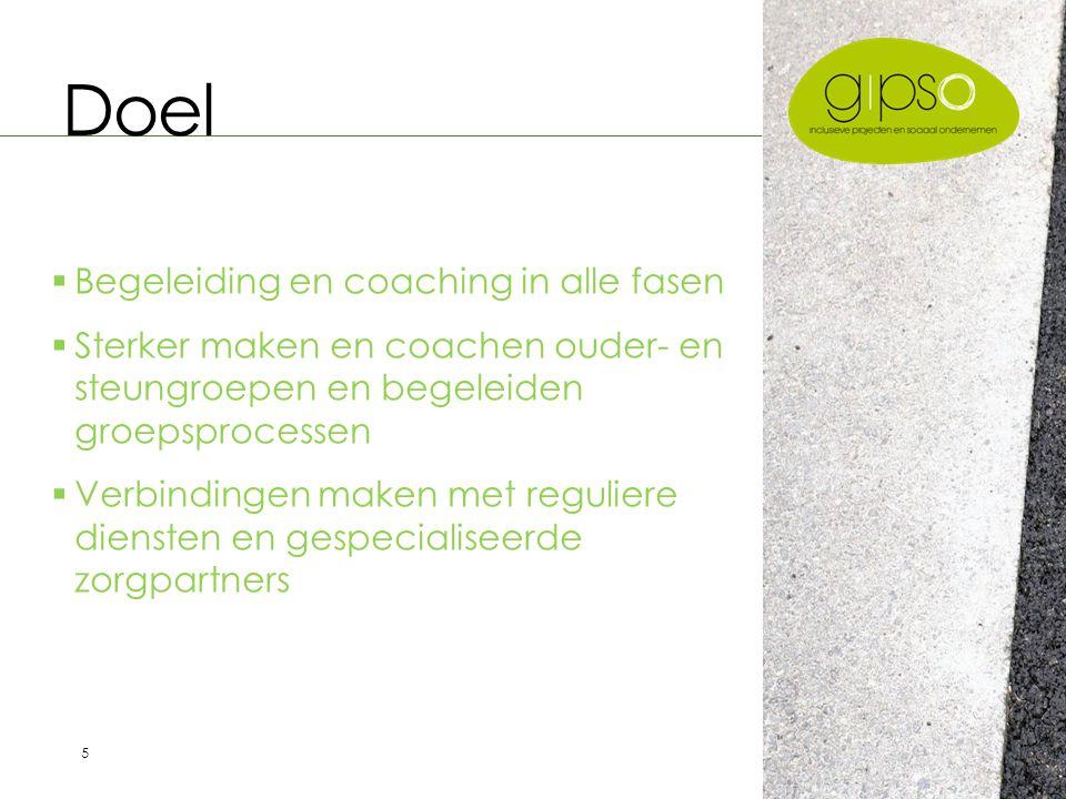 6 Structuur en Organisatie  Algemene Vergadering/Stuurgroep  Raad van Bestuur  3 Coaches  Secretariaat Inclusie Vlaanderen