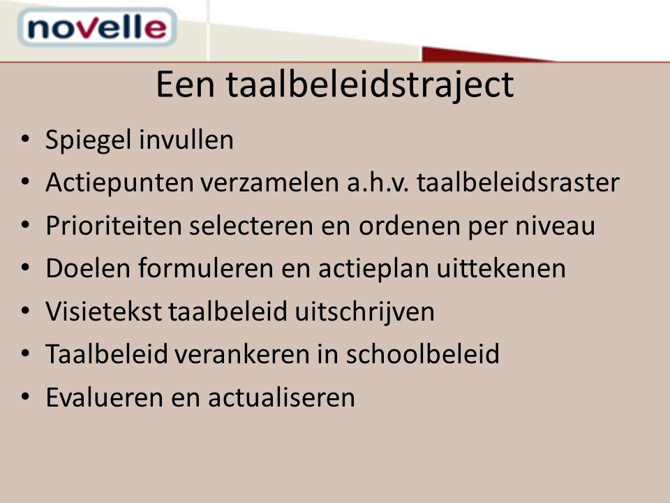 Een taalbeleidstraject Spiegel invullen Actiepunten verzamelen a.h.v. taalbeleidsraster Prioriteiten selecteren en ordenen per niveau Doelen formulere