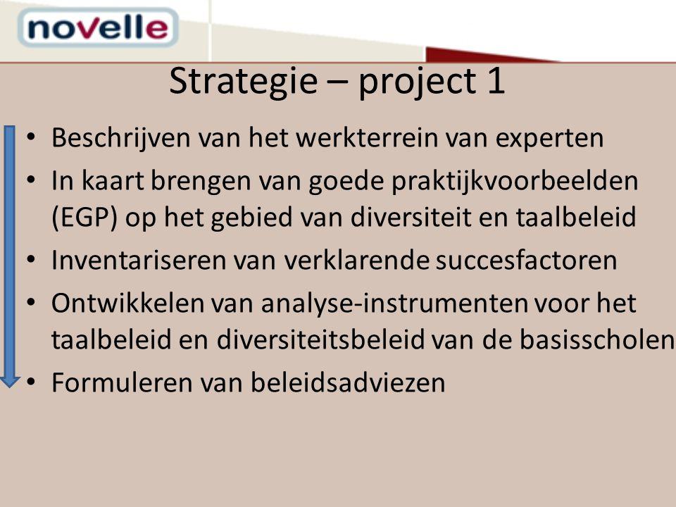 Strategie – project 1 Beschrijven van het werkterrein van experten In kaart brengen van goede praktijkvoorbeelden (EGP) op het gebied van diversiteit