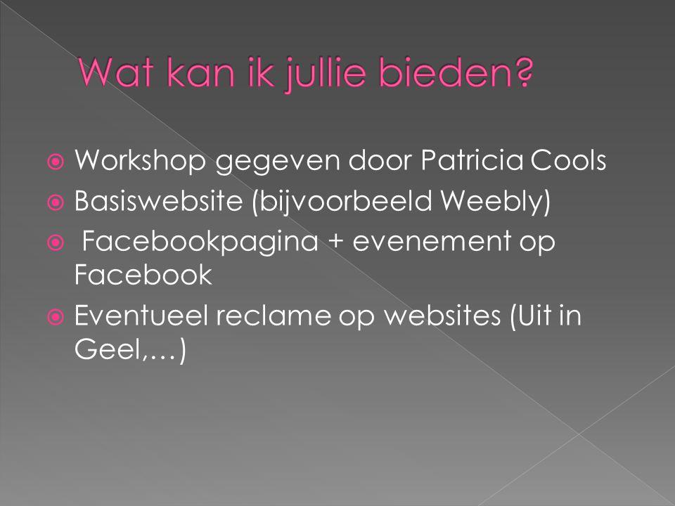  Workshop gegeven door Patricia Cools  Basiswebsite (bijvoorbeeld Weebly)  Facebookpagina + evenement op Facebook  Eventueel reclame op websites (Uit in Geel,…)