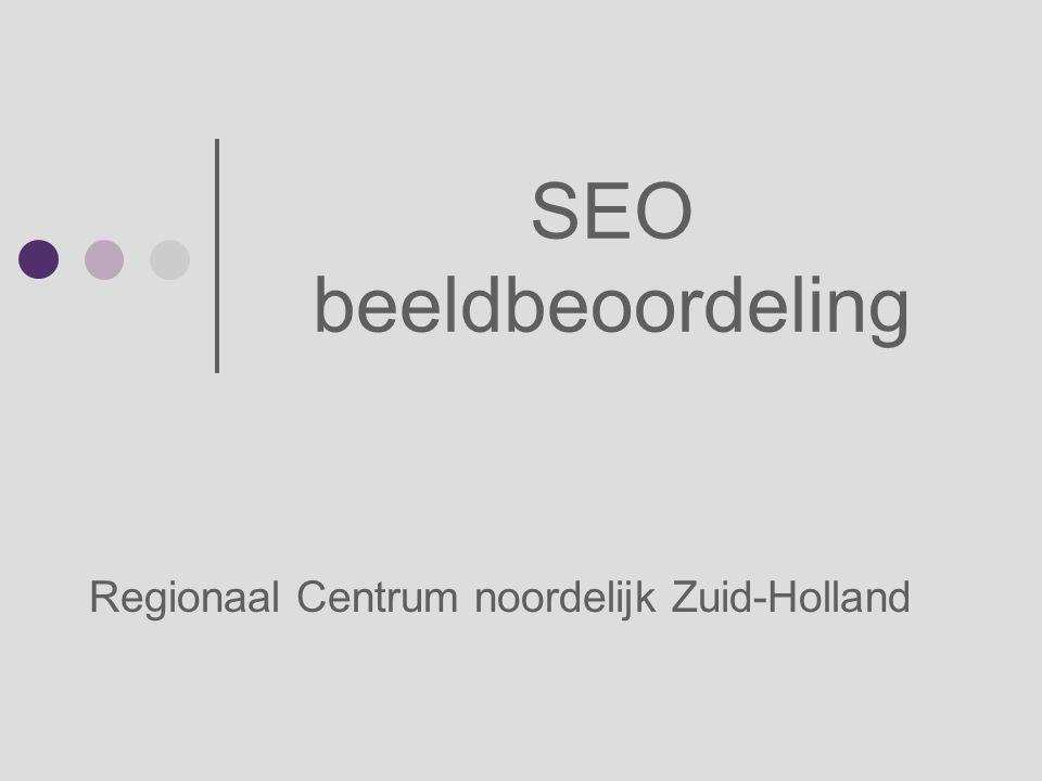 SEO beeldbeoordeling Regionaal Centrum noordelijk Zuid-Holland