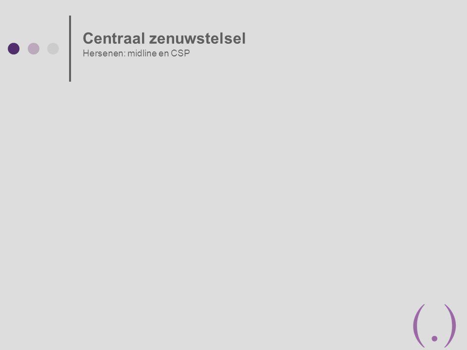 Placentalokalisatie tov. cervix