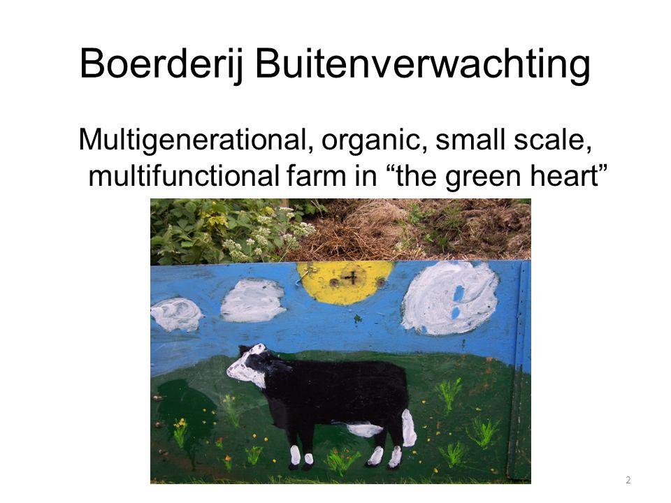 Boerderij Buitenverwachting Multigenerational, organic, small scale, multifunctional farm in the green heart @@@ Foto moestuin 2