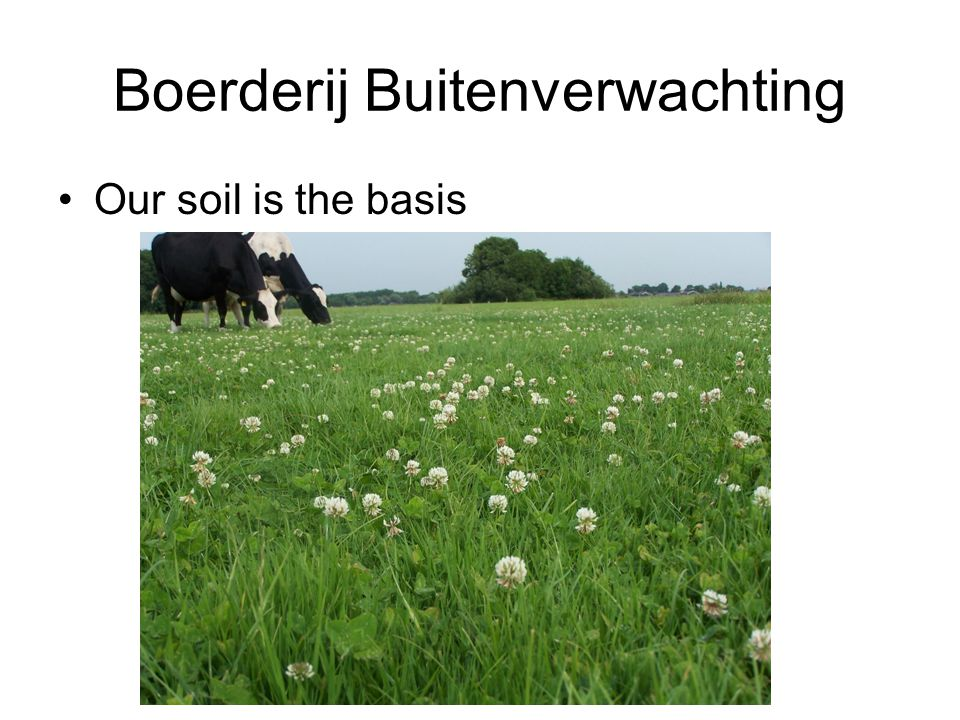 Our soil is the basis