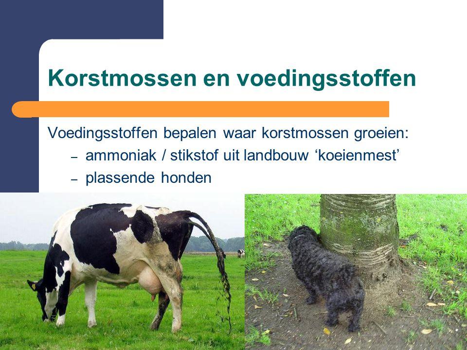 Korstmossen en voedingsstoffen Voedingsstoffen bepalen waar korstmossen groeien: – ammoniak / stikstof uit landbouw 'koeienmest' – plassende honden