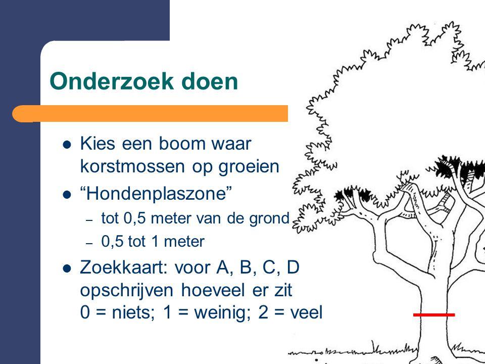 Onderzoek doen Kies een boom waar korstmossen op groeien Hondenplaszone – tot 0,5 meter van de grond – 0,5 tot 1 meter Zoekkaart: voor A, B, C, D opschrijven hoeveel er zit 0 = niets; 1 = weinig; 2 = veel