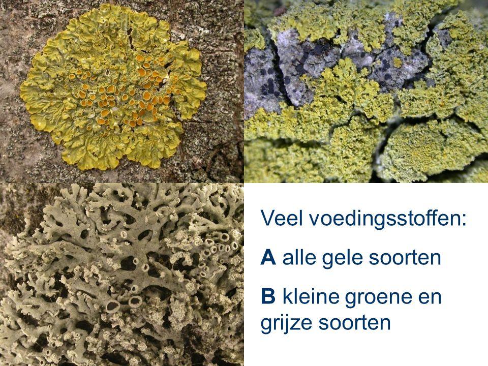 Veel voedingsstoffen: A alle gele soorten B kleine groene en grijze soorten