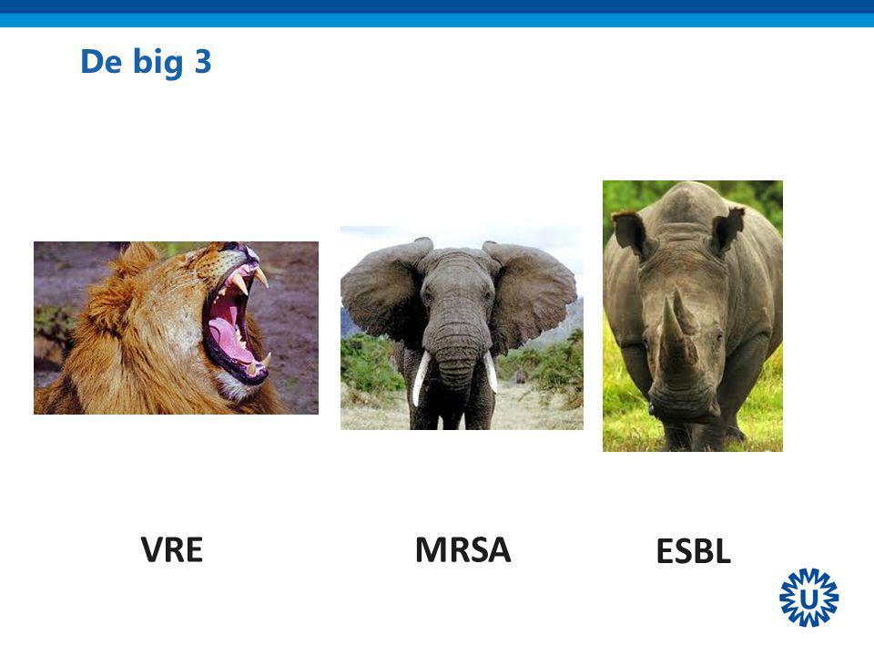 De big 3 VRE ESBL MRSA