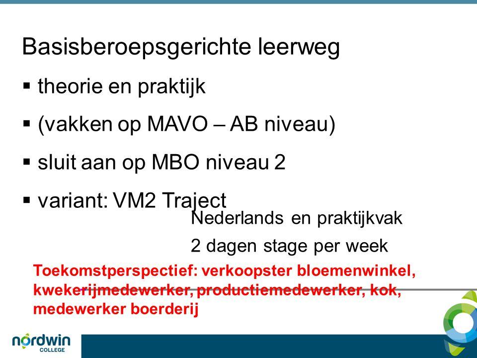Basisberoepsgerichte leerweg  theorie en praktijk  (vakken op MAVO – AB niveau)  sluit aan op MBO niveau 2  variant: VM2 Traject Nederlands en pra