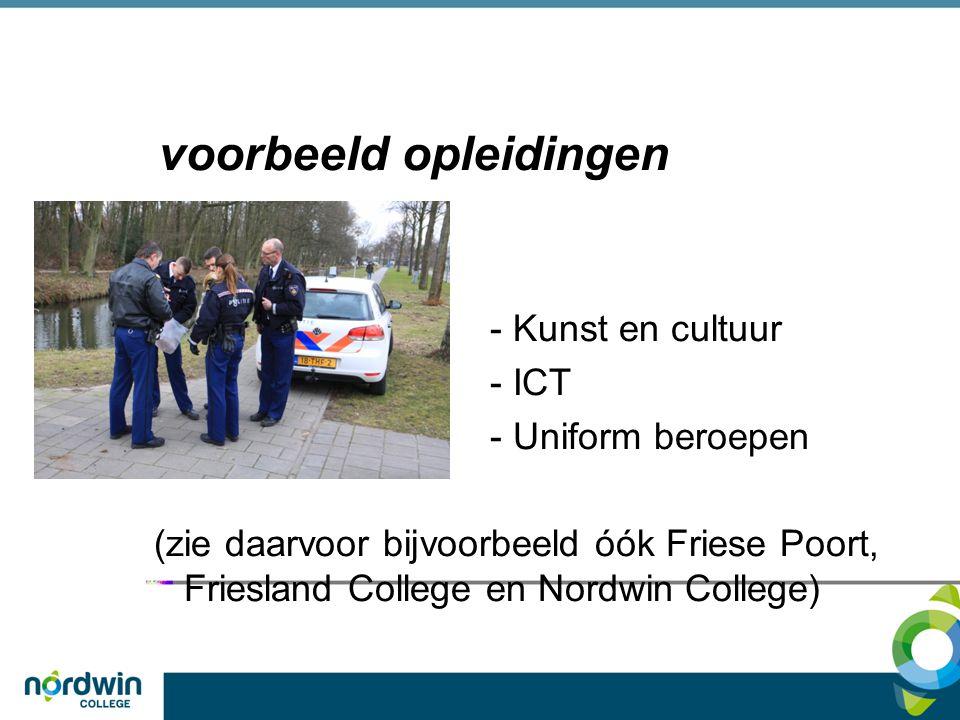voorbeeld opleidingen - Kunst en cultuur - ICT - Uniform beroepen (zie daarvoor bijvoorbeeld óók Friese Poort, Friesland College en Nordwin College)