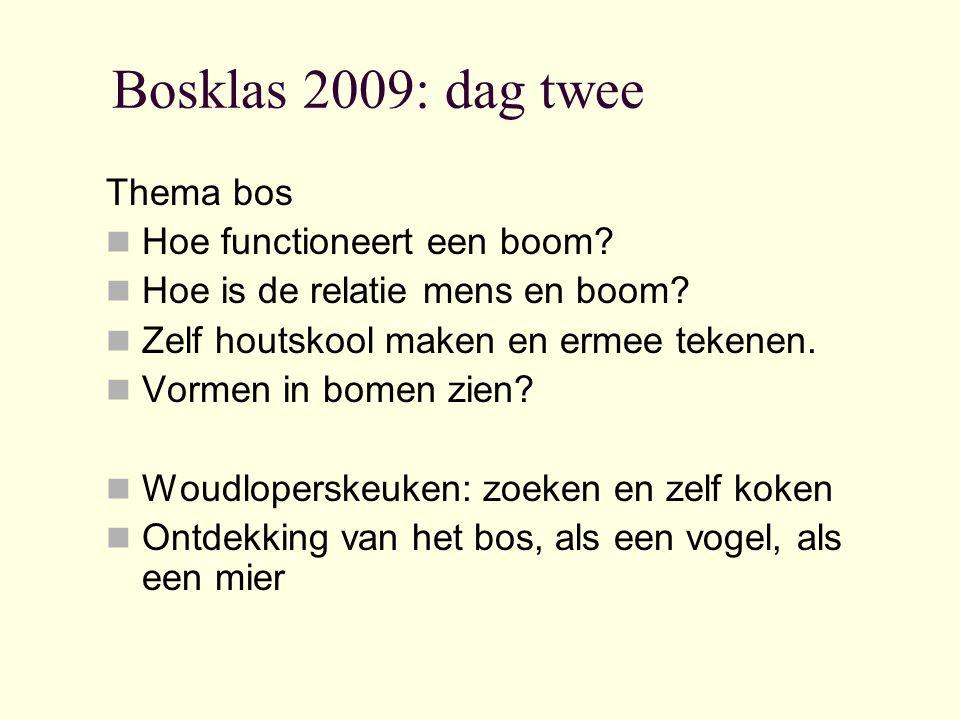 Bosklas 2009: dag twee Thema bos Hoe functioneert een boom.