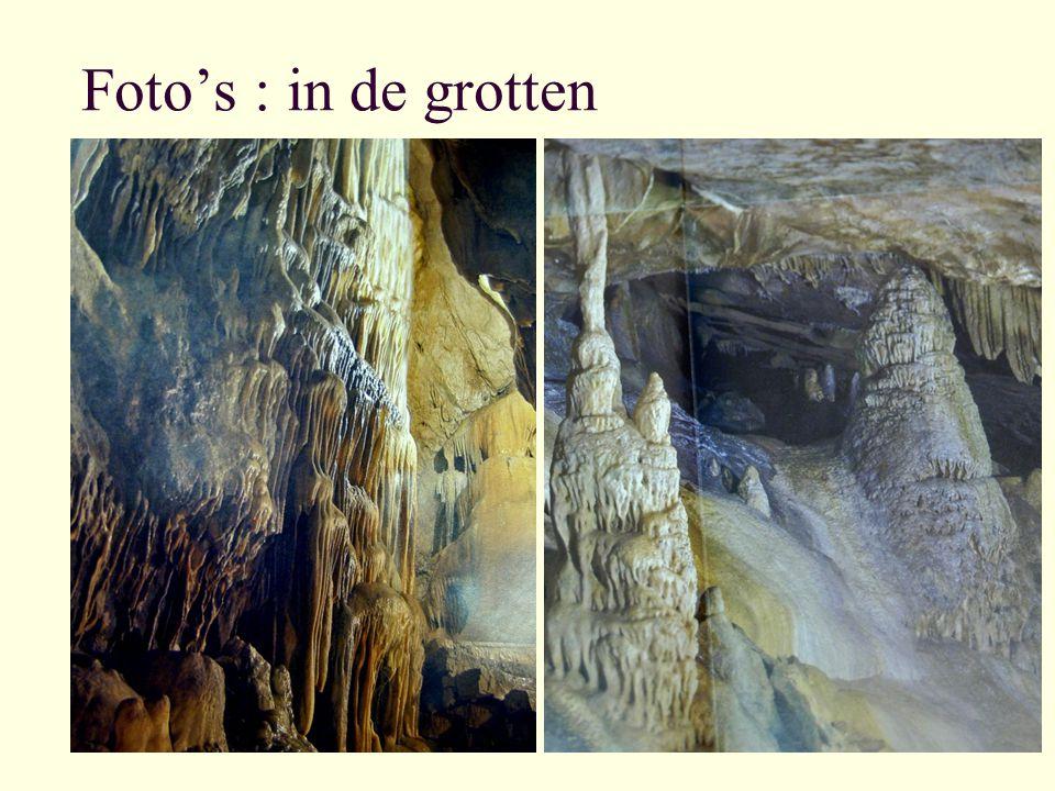 Foto's : in de grotten