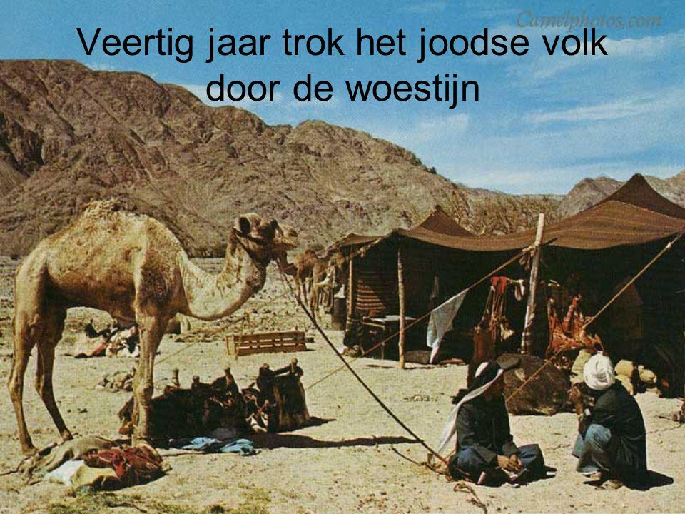 Veertig jaar trok het joodse volk door de woestijn
