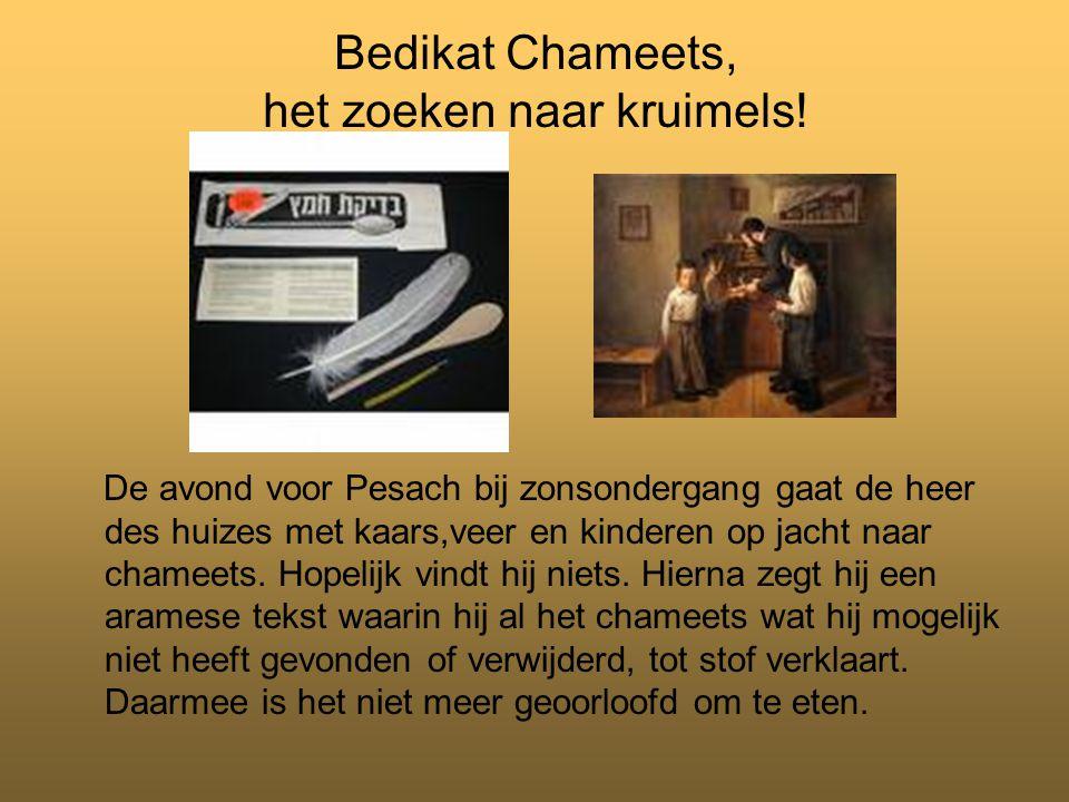 Bedikat Chameets, het zoeken naar kruimels.