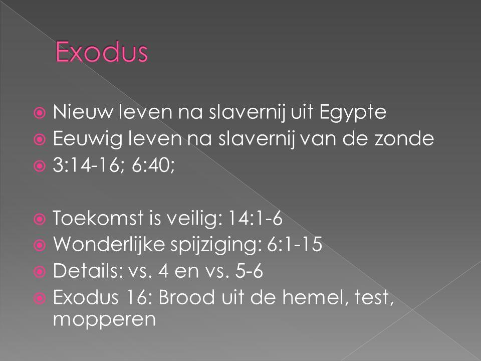  Nieuw leven na slavernij uit Egypte  Eeuwig leven na slavernij van de zonde  3:14-16; 6:40;  Toekomst is veilig: 14:1-6  Wonderlijke spijziging: