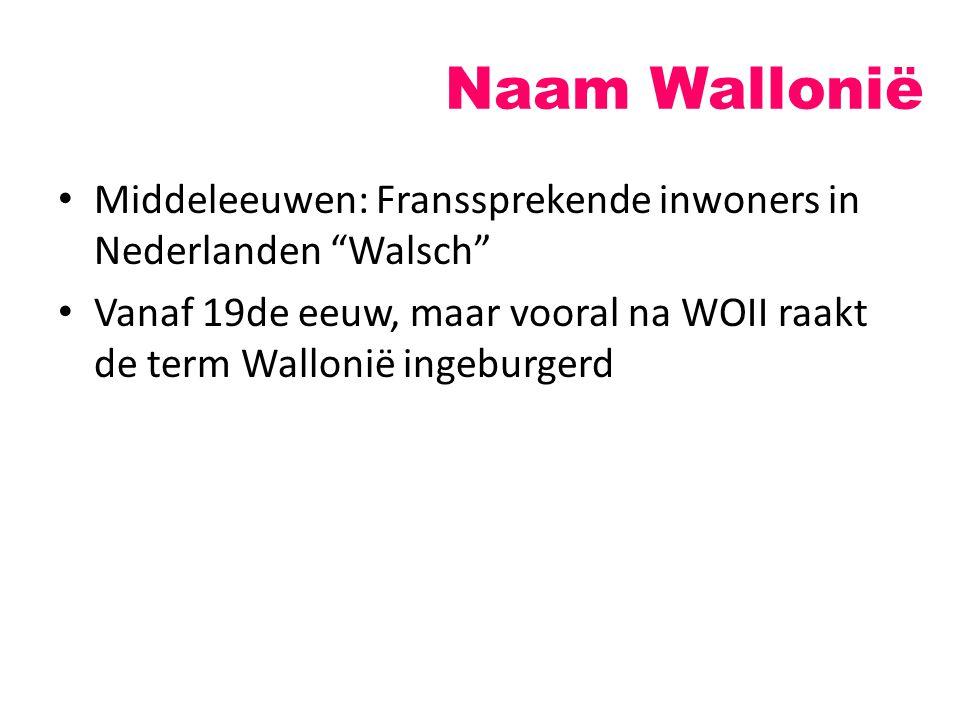 """Naam Wallonië Middeleeuwen: Franssprekende inwoners in Nederlanden """"Walsch"""" Vanaf 19de eeuw, maar vooral na WOII raakt de term Wallonië ingeburgerd"""