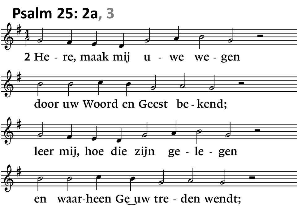 Psalm 25: 2a, 3