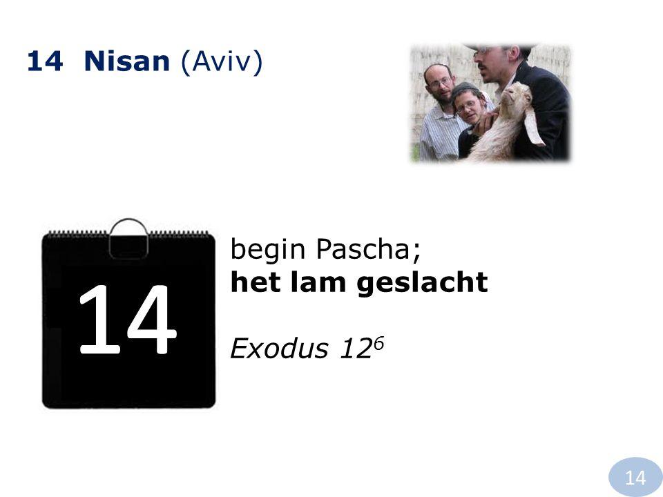 14 Nisan (Aviv) begin Pascha; het lam geslacht Exodus 12 6 14