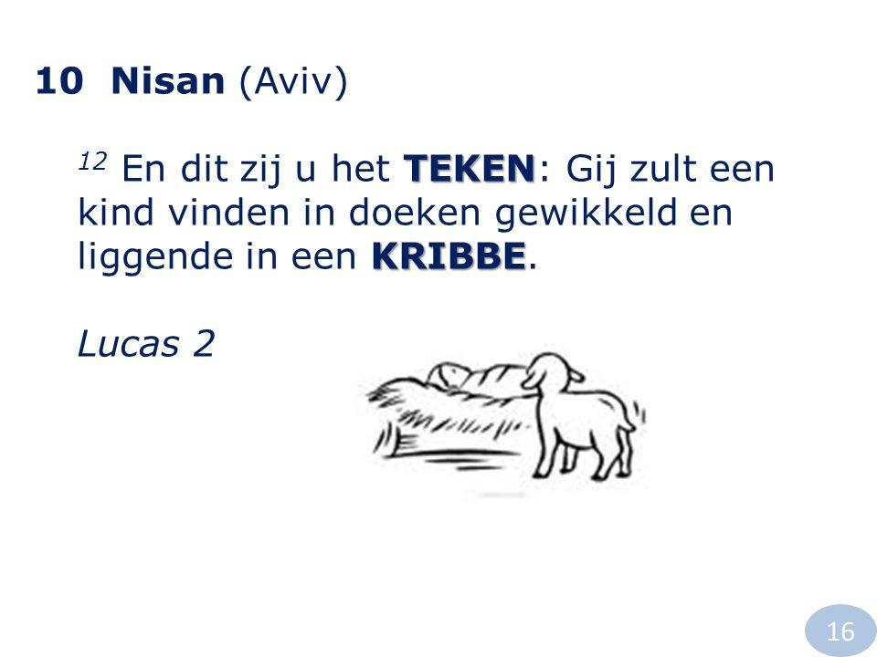 10 Nisan (Aviv) TEKEN KRIBBE 12 En dit zij u het TEKEN: Gij zult een kind vinden in doeken gewikkeld en liggende in een KRIBBE. Lucas 2 16